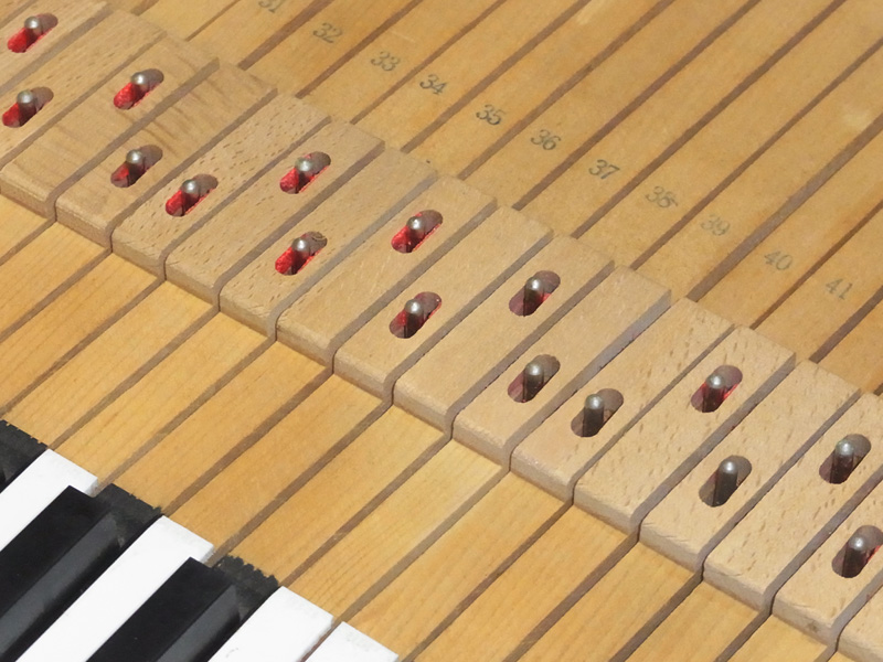 鍵盤ブッシングの虫害