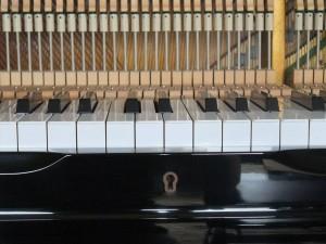鍵盤小口貼り替え10
