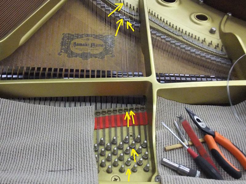 張弦の仕上がりを点検
